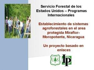 Servicio Forestal de los Estados Unidos Programas Internacionales
