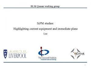 BLM Quasar working group Si PM studies Highlighting