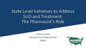State Level Initiatives to Address SUD and Treatment