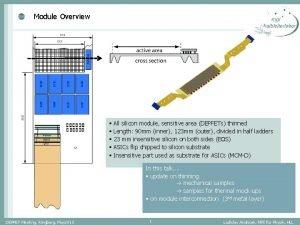 Module Overview All silicon module sensitive area DEPFETs