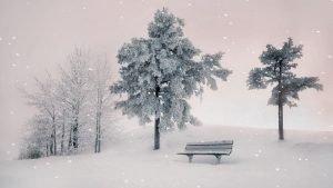 Dezembro diferente Dezembro um ms para ser vivido
