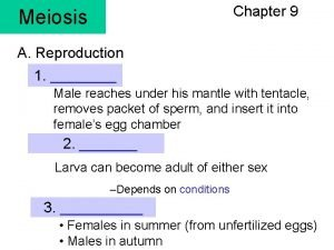 Chapter 9 Meiosis A Reproduction 1 Male reaches