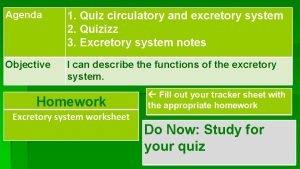 1 Quiz circulatory and excretory system 2 Quizizz