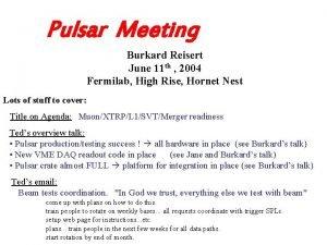 Pulsar Meeting Burkard Reisert June 11 th 2004