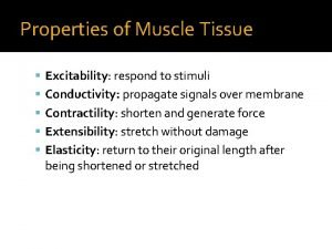 Properties of Muscle Tissue Excitability respond to stimuli
