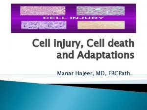 Cell injury Cell death and Adaptations Manar Hajeer
