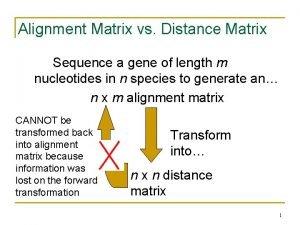 Alignment Matrix vs Distance Matrix Sequence a gene