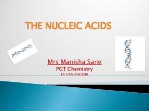 THE NUCLEIC ACIDS Mrs Manisha Sane PGT Chemistry