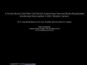 A Human Neural Crest Stem CellDerived Dopaminergic Neuronal