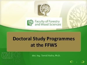Doctoral Study Programmes at the FFWS doc Ing