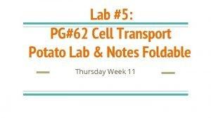 Lab 5 PG62 Cell Transport Potato Lab Notes