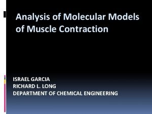 Analysis of Molecular Models of Muscle Contraction ISRAEL