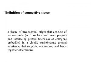 Definition of connective tissue a tissue of mesodermal