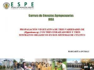 Carrera de Ciencias Agropecuarias IASA PROPAGACIN VEGETATIVA DE
