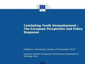 Combating Youth Unemployment The European Perspective and Policy