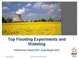 Top Flooding Experiments and Modeling Estelle BrunetThibault EDF
