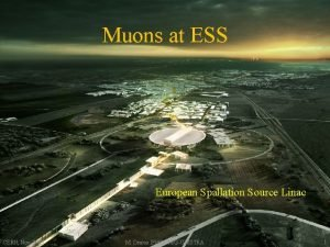 Muons at ESS European Spallation Source Linac CERN