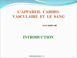 LAPPAREIL CARDIOVASCULAIRE ET LE SANG www ispits net