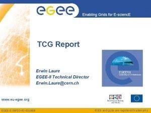 Enabling Grids for Escienc E TCG Report Erwin