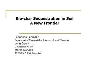 Biochar Sequestration in Soil A New Frontier Johannes