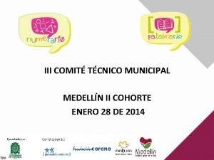 III COMIT TCNICO MUNICIPAL MEDELLN II COHORTE ENERO