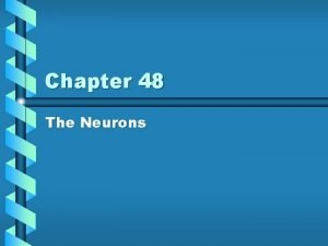Chapter 48 The Neurons Cells Communicate Gap Junctions