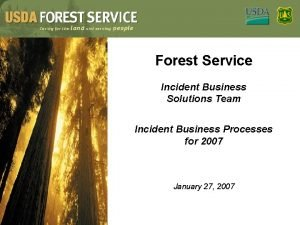 Forest Service Incident Business Solutions Team Incident Business