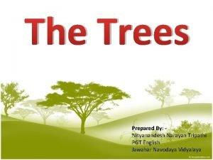 The Trees Prepared By Nityanandesh Narayan Tripathi PGT