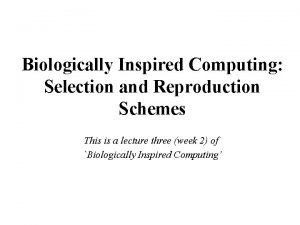 Biologically Inspired Computing Selection and Reproduction Schemes This