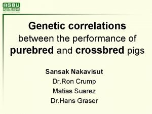 Genetic correlations between the performance of purebred and