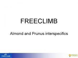 FREECLIMB Almond and Prunus interspecifics Priority traits genetic