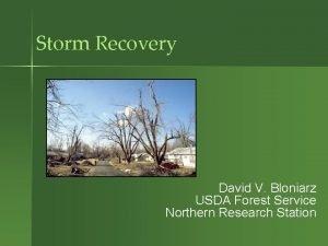 Storm Recovery David V Bloniarz USDA Forest Service