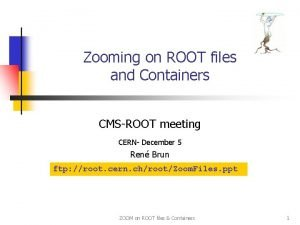 Zooming on ROOT files and Containers CMSROOT meeting