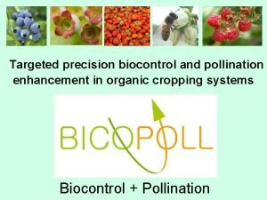 Targeted precision biocontrol and pollination enhancement in organic