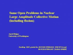 Some Open Problems in Nuclear Large Amplitude Collective