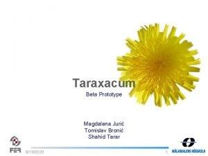 Taraxacum Beta Prototype Magdalena Juri Tomislav Broni Shahid