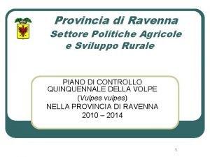 Provincia di Ravenna Settore Politiche Agricole e Sviluppo
