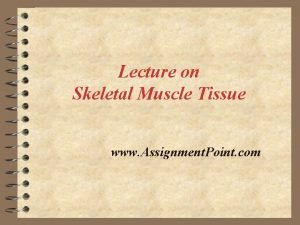 Lecture on Skeletal Muscle Tissue www Assignment Point