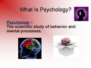 What Is Psychology Psychology The scientific study of