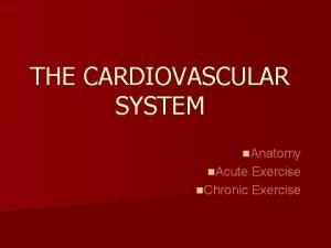 THE CARDIOVASCULAR SYSTEM n Anatomy n Acute Exercise