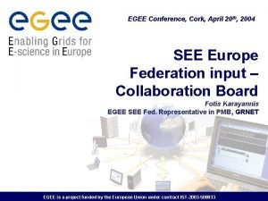 EGEE Conference Cork April 20 th 2004 SEE