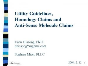 Utility Guidelines Homology Claims and AntiSense Molecule Claims