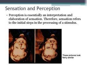 Sensation and Perception Perception is essentially an interpretation