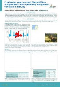 Freshwater pearl mussel Margaritifera margaritifera Host specificity and