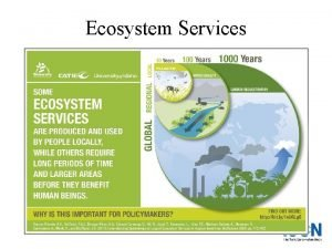 Ecosystem Services What is an ecosystem service Pollination