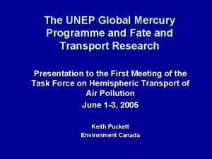The UNEP Global Mercury Programme and Fate and