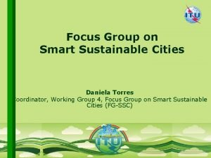 Focus Group on Smart Sustainable Cities Daniela Torres