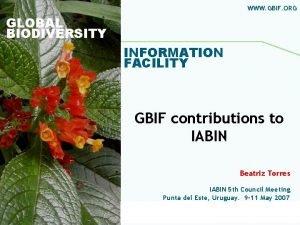 WWW GBIF ORG GLOBAL BIODIVERSITY INFORMATION FACILITY GBIF
