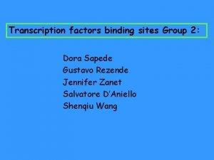 Transcription factors binding sites Group 2 Dora Sapede