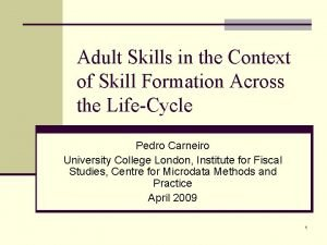 Adult Skills in the Context of Skill Formation